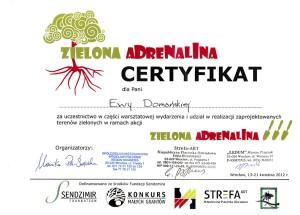 dyplom adrenalina2