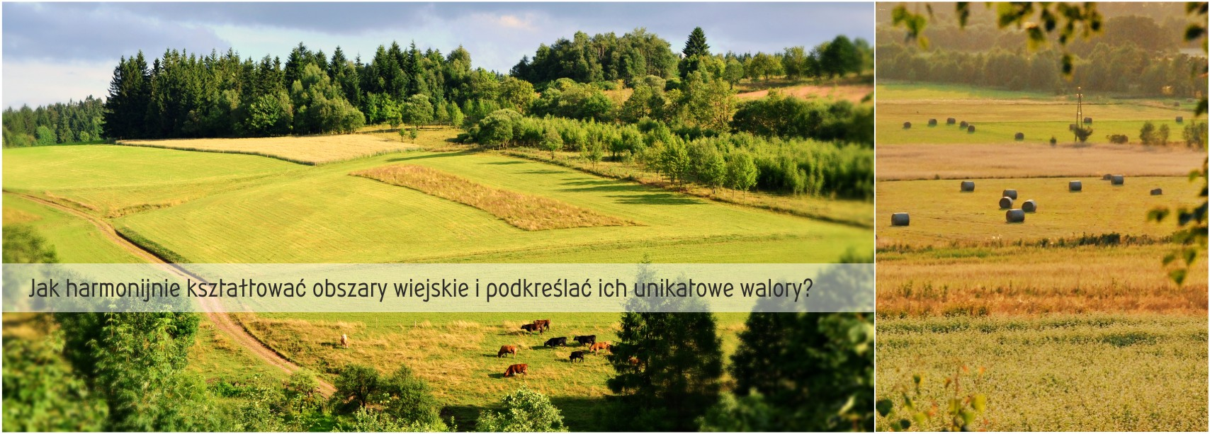 opracowanie wiejskie
