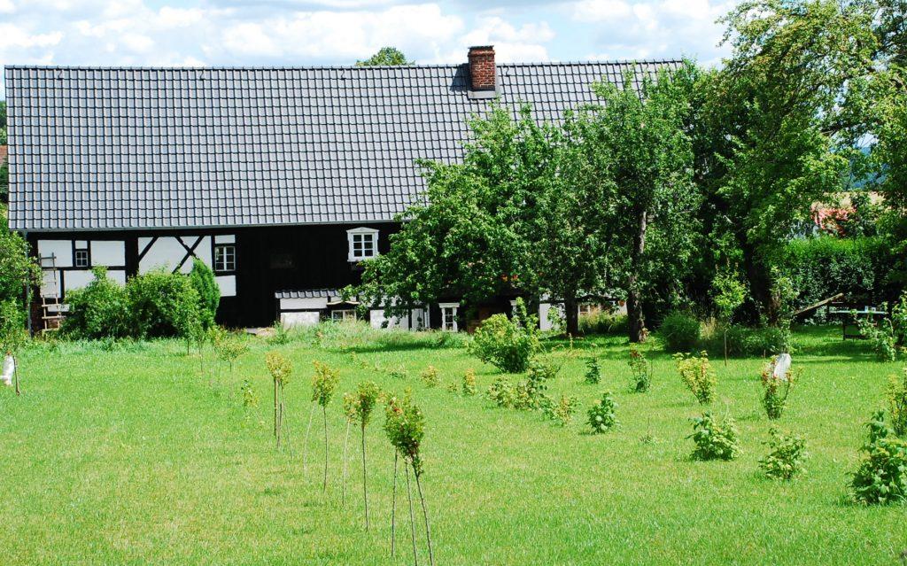 zieleń przy domu z histroią